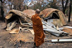 Cháy rừng ở Úc'Nụ cười bằng an của nhà sư trong cơn lửa'