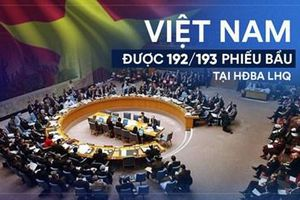 Đối ngoại 2019: Thể hiện bản lĩnh và vị thế chính trị Việt Nam