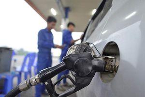 Lợi nhuận nhà bán lẻ xăng dầu lớn thứ hai Việt Nam thấp nhất 5 năm