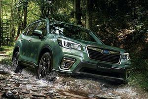 Subaru Forester X-Edition nội thất chống nước từ 680 triệu đồng