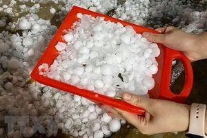 Hàng trăm nhà dân ở Bắc Kạn bị thủng, tốc mái do cơn mưa đá ngày 30 Tết