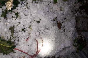 Mưa đá gây thiệt hại tại một số tỉnh, thành phố miền bắc