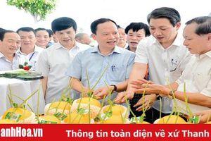Đảng bộ, chính quyền, quân và dân các dân tộc tỉnh Thanh Hóa phấn đấu thực hiện thắng lợi nhiệm vụ năm 2020 và giai đoạn 2015 - 2020, tạo xung lực để hiện thực hóa khát vọng thịnh vượng