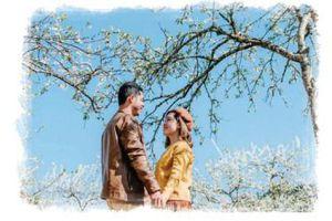 Những bài thơ hay ca ngợi vẻ đẹp đất nước, con người Việt Nam khi xuân tới