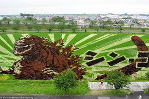 Ngắm triển lãm tranh nghệ thuật quái vật Godzilla, người đẹp Marilyn Monroe... trên ruộng lúa tại Nhật Bản