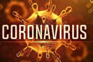 ĐBSCL khẩn trương ứng phó bệnh viêm phổi do virus Corona