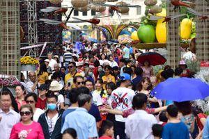 Chưa hết Tết, hàng trăm chậu hoa bị đạp nát ở đường hoa Nguyễn Huệ