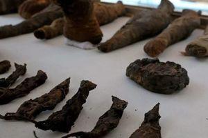 Bí mật kinh thiên xác ướp chuột ngàn năm tuổi thời Ai Cập cổ