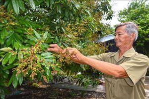 Bí quyết kiếm hàng chục triệu mỗi tháng của lão nông sống giữa rừng U Minh