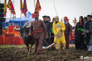 Tưng bừng lễ hội Tịch điền Đọi Sơn Tết Canh Tý 2020 tại Hà Nam