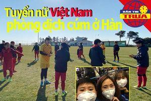 Tuyển nữ Việt Nam phòng dịch cúm;Bác tin đồn Iraq chọn Mỹ Đình