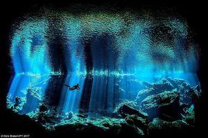 Bí mật thăm thẳm vẫn nằm nơi đại dương