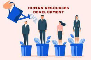 Phát triển nguồn nhân lực tại Cục Thống kê tỉnh Kon Tum