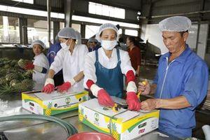 Sôi nổi khí thế sản xuất đầu năm tại Công ty cổ phần thực phẩm xuất khẩu Đồng Giao