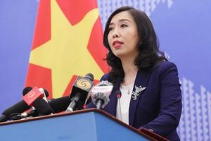 Việt Nam sẵn sàng đưa công dân Việt Nam ở vùng có dịch về nước khi cần thiết