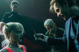 'Birds of Prey': Bom tấn mới nhất nhà DC về Harley Quinn có after-credit không?