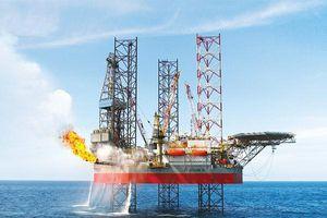 Do đâu lãi ròng trong quý 4/2019 của PV Drilling giảm đến 64%?