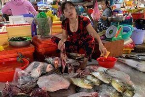 Lập biên bản người phụ nữ xẻ thịt rùa xanh bán ở chợ