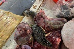 Lập biên bản nữ tiểu thương xẻ thịt rùa xanh bán ở chợ