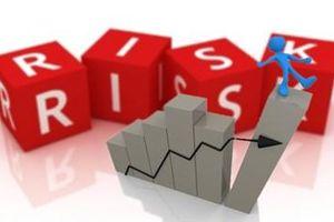 Ảnh hưởng của đòn bẩy tài chính của doanh nghiệp đến rủi ro tín dụng tại Ngân hàng Thương mại Cổ phần Phát triển Thành phố Hồ Chí Minh - Chi nhánh Cần Thơ