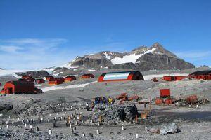 Nam Cực ghi nhận nhiệt độ nóng nhất