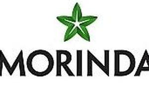 Xử phạt và thu hồi giấy chứng nhận bán hàng đa cấp của Công ty TNHH Morinda Việt Nam