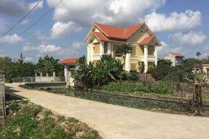 Hàng loạt cán bộ phường Yên Bình 'hô biến' đất nông nghiệp