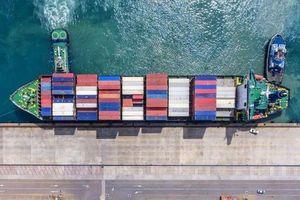 CPTPP một năm nhìn lại: Nhiều cơ hội mới cho doanh nghiệp Việt Nam và Canada