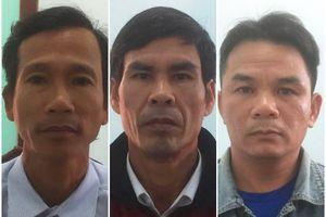 Quảng Nam: 3 người đàn ông 'bắt tay' nhau trộm dê của hàng xóm