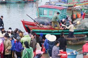 Tin Ngư nghiệp: Những chuyến biển đầu năm đầy ắp cá ở xứ Nghệ