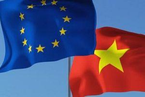 Tiến trình đến phê chuẩn của EVFTA