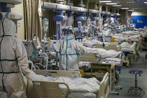 Tin mới nhất về dịch virus corona: Thêm 116 người chết, gần 5.000 ca nhiễm mới
