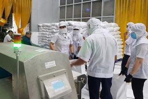 Triển vọng tích cực cho xuất khẩu gạo trong năm 2020