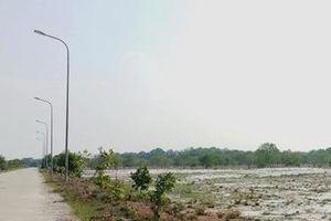 Thu hồi dự án 'treo' để tránh lãng phí tài nguyên đất