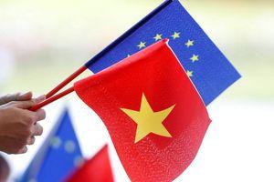 EVFTA được thông qua: 'Nếu không đổi mới, doanh nghiệp Việt sẽ chỉ là sân sau của thị trường EU'