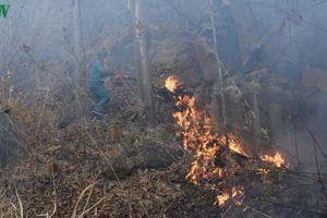 Chữa cháy núi Minh Đạm, phát hiện thi thể đang phân hủy