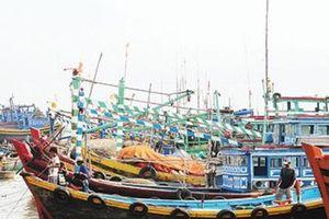 Tin Ngư nghiệp: Vì sao Bình Thuận lắp thiết bị giám sát tàu cá chậm?