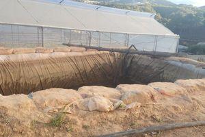 Lâm Đồng: Hai cháu nhỏ bị đuối nước thương tâm ở hố nước phục vụ nông nghiệp
