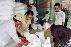 Xuất cấp gạo hỗ trợ 3 tỉnh Lai Châu, Điện Biên và Đắk Nông