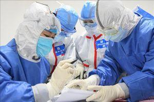 Cảnh báo nguy cơ khan hiếm thuốc kháng sinh do tác động của COVID-19