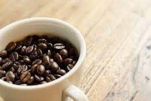 Giá cà phê hôm nay 18/2: Tăng nhẹ một vài địa phương