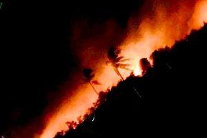 Vụ cháy bưng Ngang ở thị xã La Gi đã tự tắt sau 8 giờ