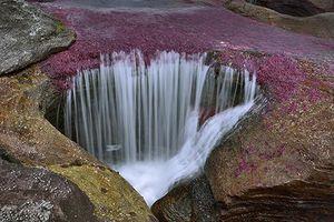 Top 7 dòng sông kỳ lạ bậc nhất hành tinh