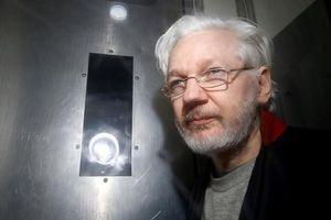 Không có chuyện ông Trump ra điều kiện tha bổng nhà sáng lập WikiLeaks