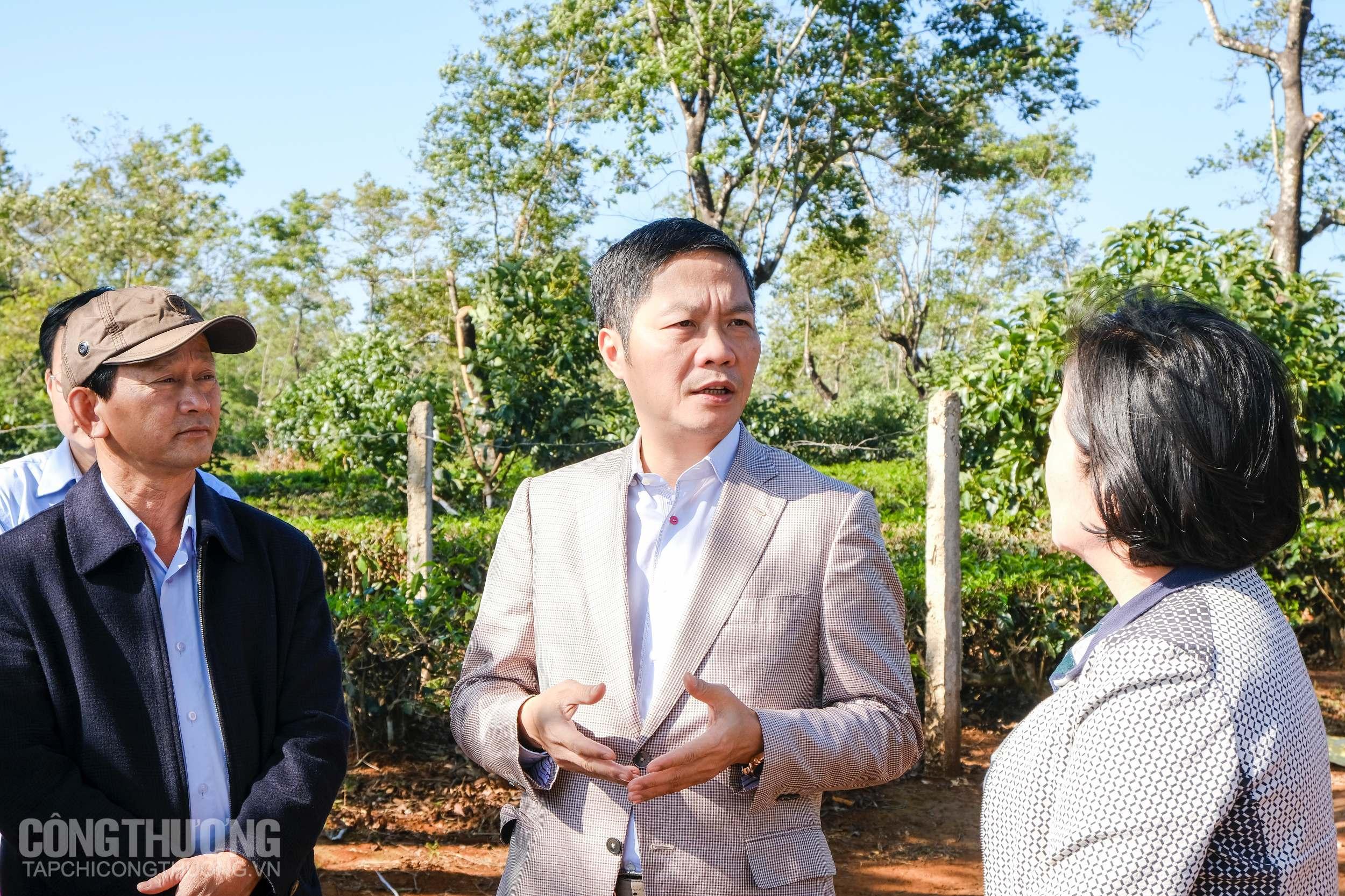 Bộ Công Thương đồng hành cùng Gia Lai thúc đẩy phát triển năng lượng tái tạo