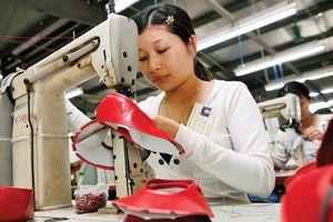 Đáp ứng quy tắc xuất xứ để tận dụng ưu đãi từ EVFTA