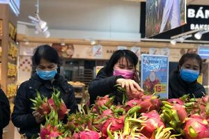 Giải cứu nông sản: Phát triển công nghiệp chế biến thay vì xuất khẩu tươi?