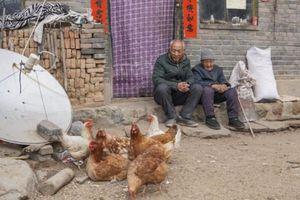 Dịch Covid-19 thách thức lời hứa xóa nghèo của nhà lãnh đạo Trung Quốc