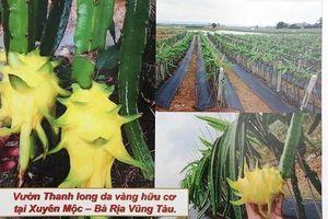 Quảng Ngãi: Công ty Anh Khải Ký đầu tư gần 80 tỷ đồng làm khu sản xuất nông nghiệp