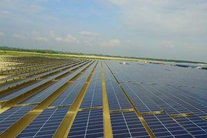 Điện Gia Lai (GEG) thoái toàn bộ vốn tại Thủy điện Kênh Bắc - Ayun Hạ